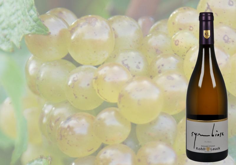SYM...SE - Vin blanc barriqué - OR MundusVINI